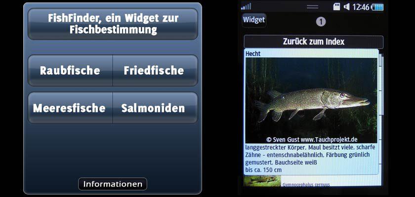 FishFinder 1