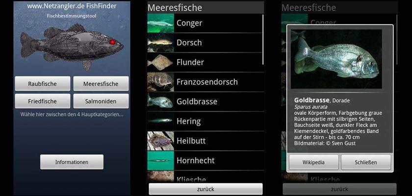 FishFinder2
